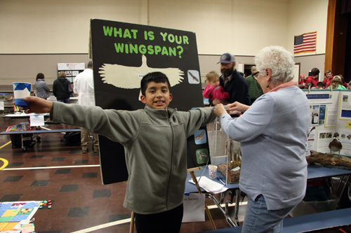 measure wingspan